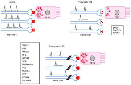http://www.genomemedicine.com/content/figures/gm212-1.jpg